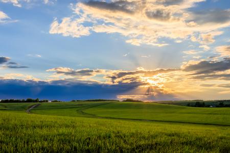 Puesta de sol en tierras cultivadas en el campo en una tarde de verano con fondo de cielo nublado. Paisaje.