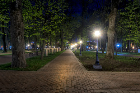 City night park in early summer or spring with pavement, young green leaves and trees. Landscape.