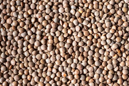 Close up brown lentil seeds background. Healthy vegeterian food. Texture. Stock fotó