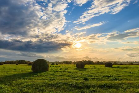 Field with golden haystacks at sunset in early autumn evening with a cloudy sky background. 版權商用圖片