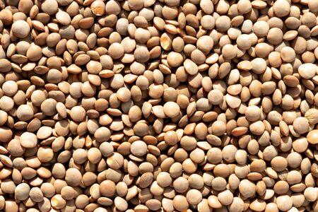 Close up brown lentil seeds background. Healthy vegeterian food. Texture. 版權商用圖片