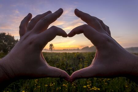 Hands in the shape of heart against the sunrise over the field with flowers in the summer with a sky background. Landscape.