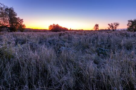 Twilight on a field with grass covered with frost in early autumn morning and trees on a background. Landscape.