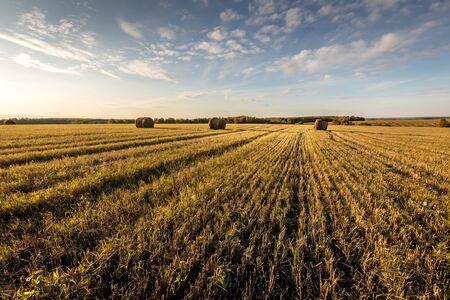 Heuhaufen auf dem Feld im sonnigen Herbsttag mit bewölktem Himmelshintergrund. Ländliche Landschaft. Goldene Ernte von Weizen am Abend.