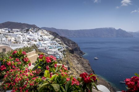 Oia city on Santorini island on a clear sunny day with red flowers on a foreground. Cliff overlooking the sea and the caldera.