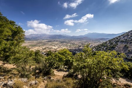 Top view of the Lassithi Plateau on a sunny clear day with trees in the foreground and a cloudy sky in the background. Crete island, Greece. Landscape.