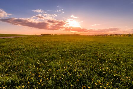 Sunrise or sunset on a field covered with young green grass and yellow flowering dandelions, a hill in the background and a cloudy sky with sunbeams cutting through the clouds. Standard-Bild