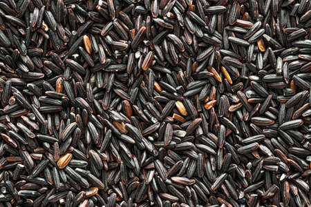 Black wild rice grains background or texture. Gluten-Free and healthy vegeterian food. Vegan nutrition component.