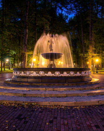 A fountain with blurred streams of water in a night park illuminated by lanterns with a stone pavement, trees and benches. Cityscape. Zdjęcie Seryjne