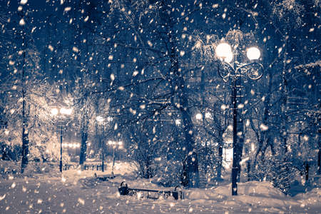 Winter night park with lanterns, pavement and trees covered with snow in heavy snowfall. Standard-Bild