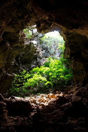 Entrance to natural caves with lush greenery