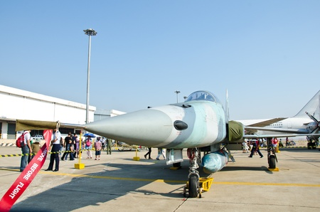 BANGKOK - JANUARY 14 : F-5E on display at Don Muang Airshow, January 14, 2012, Don Muang Airport, Bangkok, Thailand.