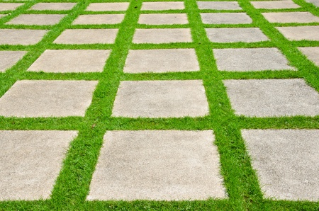 Grass between stones, block paving, photo