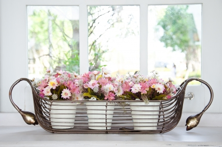 Photo of colorful flowers in flower pots at window