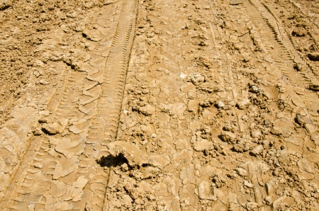 Car tracks in the soil  photo