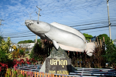 SINGBURI - DECEMBER 25: Fish Festival and one tombon one product (OTOP) of Sing Buri's the 18th on December 25, 2012 in Singburi, Thailand. Stock Photo - 16994865