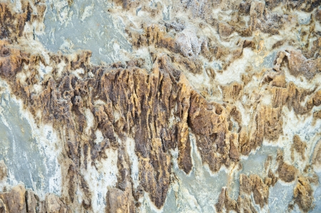 Natural Sedimentary rock surface, background or texture. photo