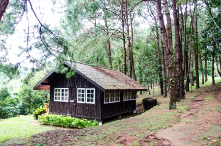 Typical wooden house in forest, Thailand  photo