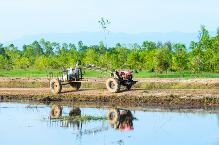 Thai farmer using walking tractors for cultivated soil for rice, Thailand  photo