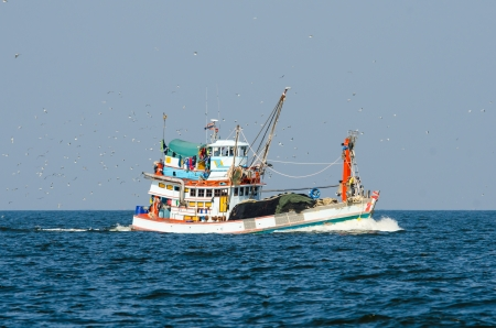 Fishing boat trawler in the Gulf of Thailand and birds following  photo