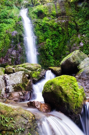 Pa San Kone waterfall in deep forest, Nakhon Nayok, Thailand  photo