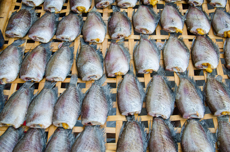 food preservation: Dry Gourami fish, preservation, Thai food.