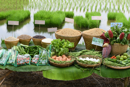 SINGBURI - THAILAND 18 : Agricultural products such as rice, beans, cucumbers, tomatoes, vegetables and egg of farmers at Bangrachan on October 18, 2016 in Singburi, Thailand.