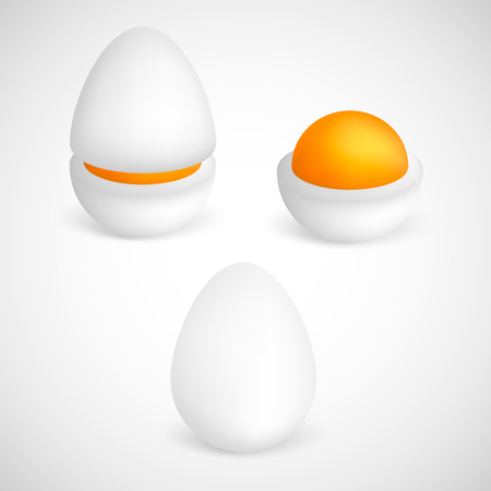 Vector boiled eggs isolated on white background. Set of boiled, half, sliced eggs. Eggs in various forms. Ilustração