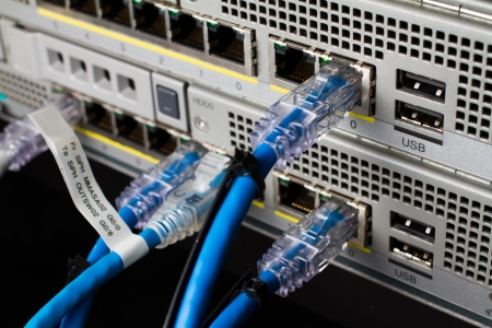 Server Network switch and UTP ethernet cables photo