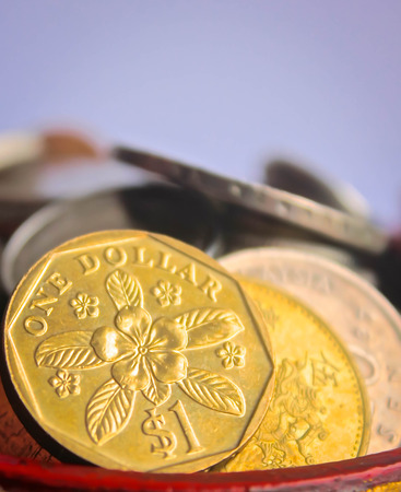 coins shot in golden color: Golden one dollar coin in the saving bow
