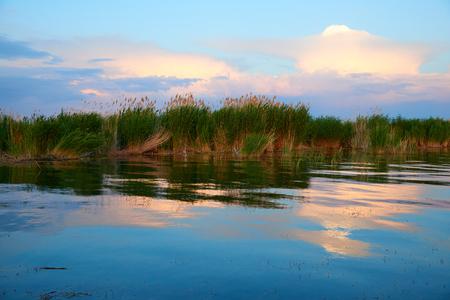 Area costiera Lago Balkhash. Il lago Balkhash si trova in Asia centrale nel Kazakistan sud-orientale. Archivio Fotografico