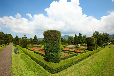perfectly: Perfectly Shaped Garden