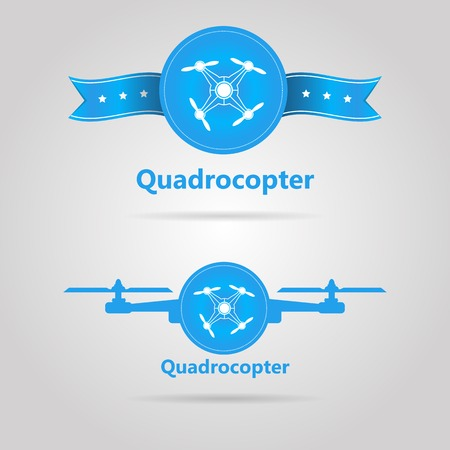 青白い輪郭 quadrocopter で言葉 Quadrocopter トップ ビューに署名します。灰色の背景に 2 つの分離されたベクトル イラスト。  イラスト・ベクター素材