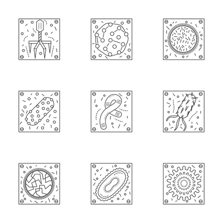 Magnified bacteria and viruses. Bacteriology and virology science. Pathogenic organisms. Set of stylish flat line vector icons. Elements of web design for business, website or mobile app.