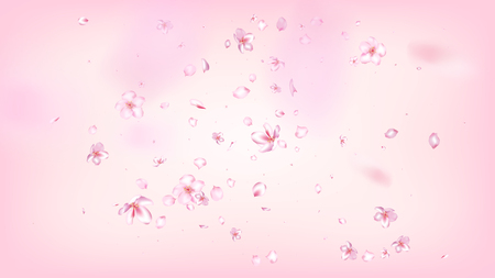Nice Sakura Blossom Isolated Vector. Spring Blowing 3d Petals Wedding Texture. Japanese Blurred Flowers Illustration. Valentine, Mothers Day Feminine Nice Sakura Blossom Isolated on Rose  イラスト・ベクター素材
