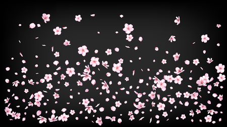 Nice Sakura Blossom Isolated Vector. Feminine Showering 3d Petals Wedding Design. Japanese Funky Flowers Illustration. Valentine, Mother's Day Realistic Nice Sakura Blossom Isolated on Black