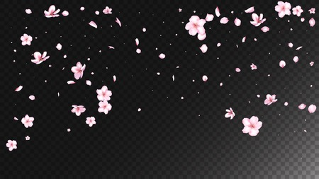 Nice Sakura Blossom Isolated Vector. Beautiful Blowing 3d Petals Wedding Pattern. Japanese Bokeh Flowers Illustration. Valentine, Mother's Day Watercolor Nice Sakura Blossom Isolated on Black