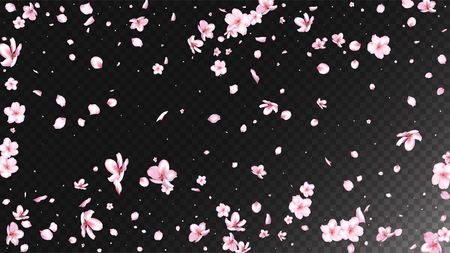 Nice Sakura Blossom Isolated Vector. Spring Flying 3d Petals Wedding Border. Japanese Style Flowers Wallpaper. Valentine, Mothers Day Magic Nice Sakura Blossom Isolated on Black