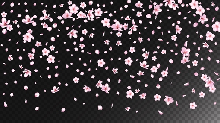 Nice Sakura Blossom Isolated Vector. Beautiful Blowing 3d Petals Wedding Pattern. Japanese Blooming Flowers Wallpaper. Valentine, Mothers Day Pastel Nice Sakura Blossom Isolated on Black Ilustrace