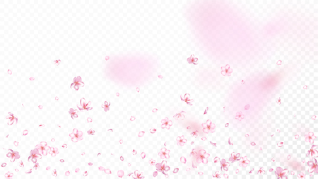 Nice Sakura Blossom Isolated Vector. Feminine Showering 3d Petals Wedding Paper. Japanese Oriental Flowers Wallpaper. Valentine, Mothers Day Tender Nice Sakura Blossom Isolated on White