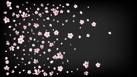 Nice Sakura Blossom Isolated Vector. Magic Blowing 3d Petals Wedding Texture. Japanese Blurred Flowers Illustration. Valentine, Mothers Day Summer Nice Sakura Blossom Isolated on Black Çizim