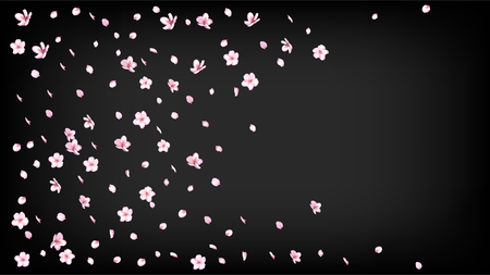 Nice Sakura Blossom Isolated Vector. Summer Falling 3d Petals Wedding Pattern. Japanese Beauty Spa Flowers Wallpaper. Valentine, Mothers Day Beautiful Nice Sakura Blossom Isolated on Black