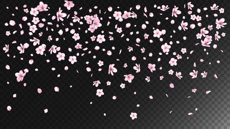 Nice Sakura Blossom Isolated Vector. Realistic Flying 3d Petals Wedding Border. Japanese Funky Flowers Illustration. Valentine, Mother's Day Realistic Nice Sakura Blossom Isolated on Black