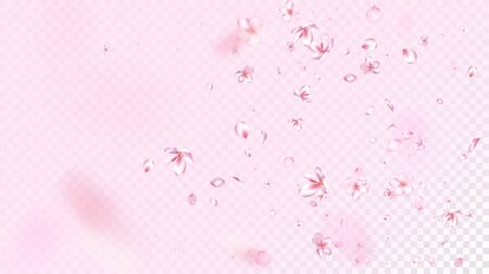 Nice Sakura Blossom Isolated Vector. Spring Flying 3d Petals Wedding Paper. Japanese Nature Flowers Wallpaper. Valentine, Mother's Day Tender Nice Sakura Blossom Isolated on Rose