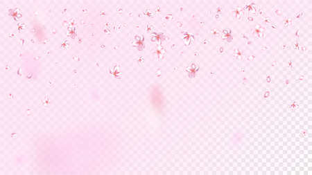 Nice Sakura Blossom Isolated Vector. Spring Showering 3d Petals Wedding Paper. Japanese Beauty Spa Flowers Illustration. Valentine, Mother's Day Realistic Nice Sakura Blossom Isolated on Rose