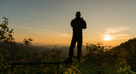 tree marigold: silhouette a man with Tree marigold with Tung Bua Tong background  in Maehongson, Thailand