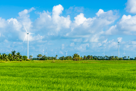 Green technology concept. Wind generators in field at Hua Sai District,  Nakhon Si Thammarat Province, Thailand Stockfoto