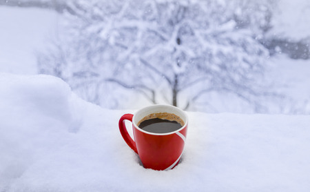 invigorate: Hot cup of coffee on snow  Perfect settings for a winter morning: red mug with hot steamy coffee on a fresh coat of snow, waiting for the dancing snowflakes to fall in it and melt away.