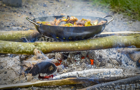 wood and fire: Vegetables pan cooked on coals  Close-up image with vegetables cooked without oil, in its own juice, in a pan with grid directly on wood fire, out in the nature. Picture suggesting healthy cooking, without fat or energy consumption.