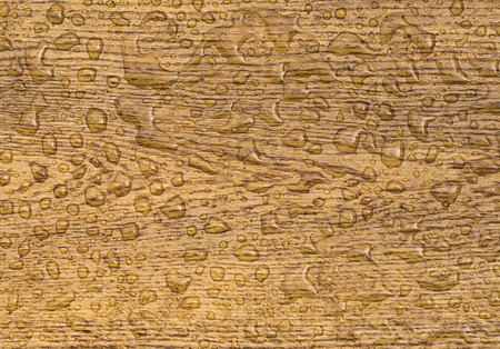 water repellent: Oak background with raindrops  Wooden plank section sprinkled with water drops,  image from an oak tree floor water repellent. Stock Photo